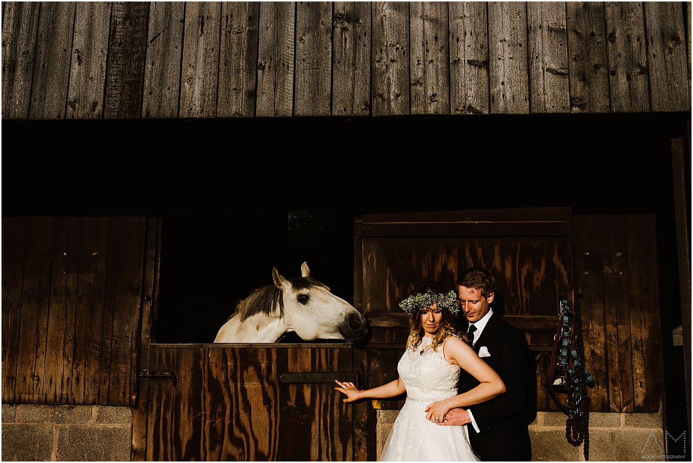 Bride and groom posing with a horse