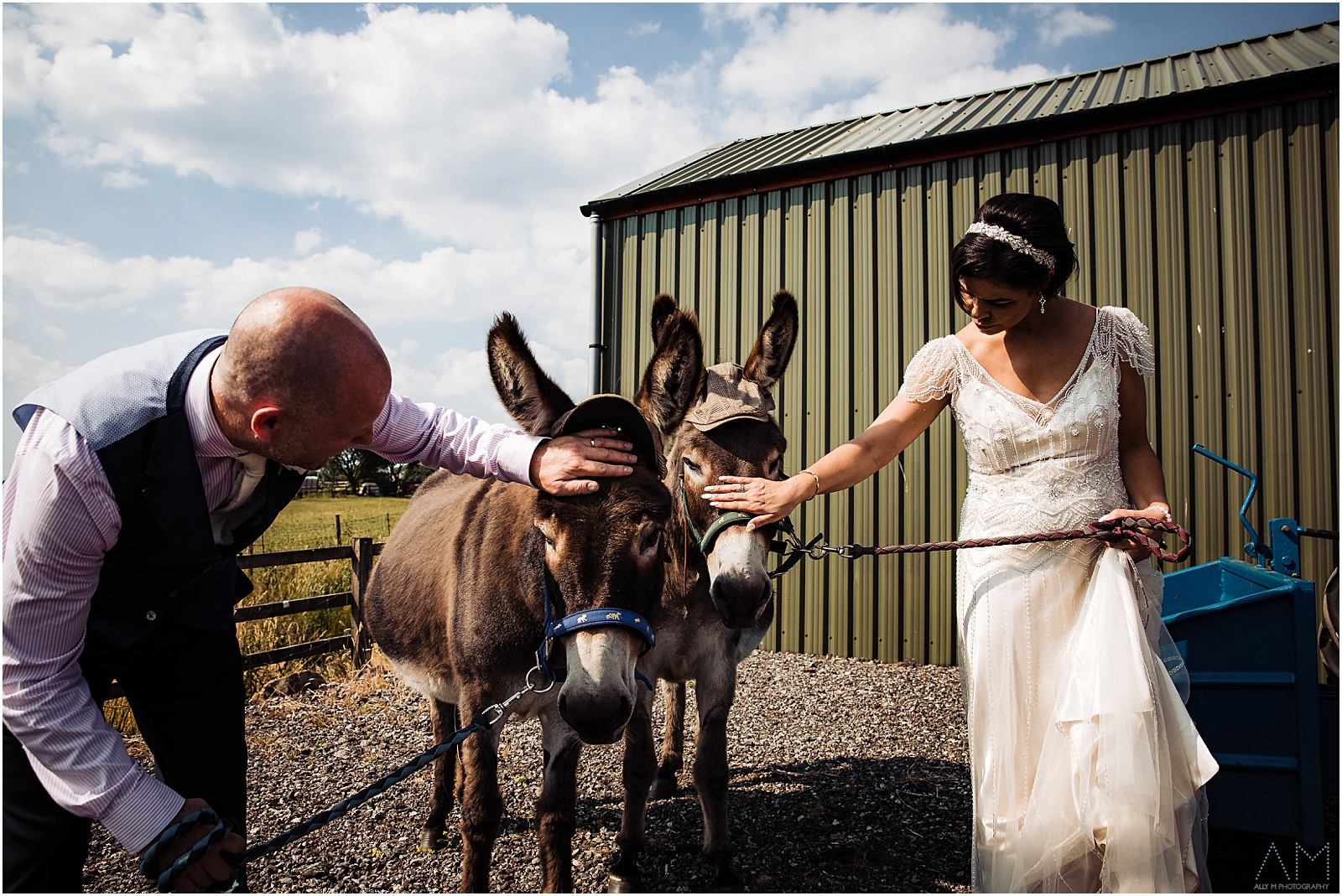 bride and groom with donkeys